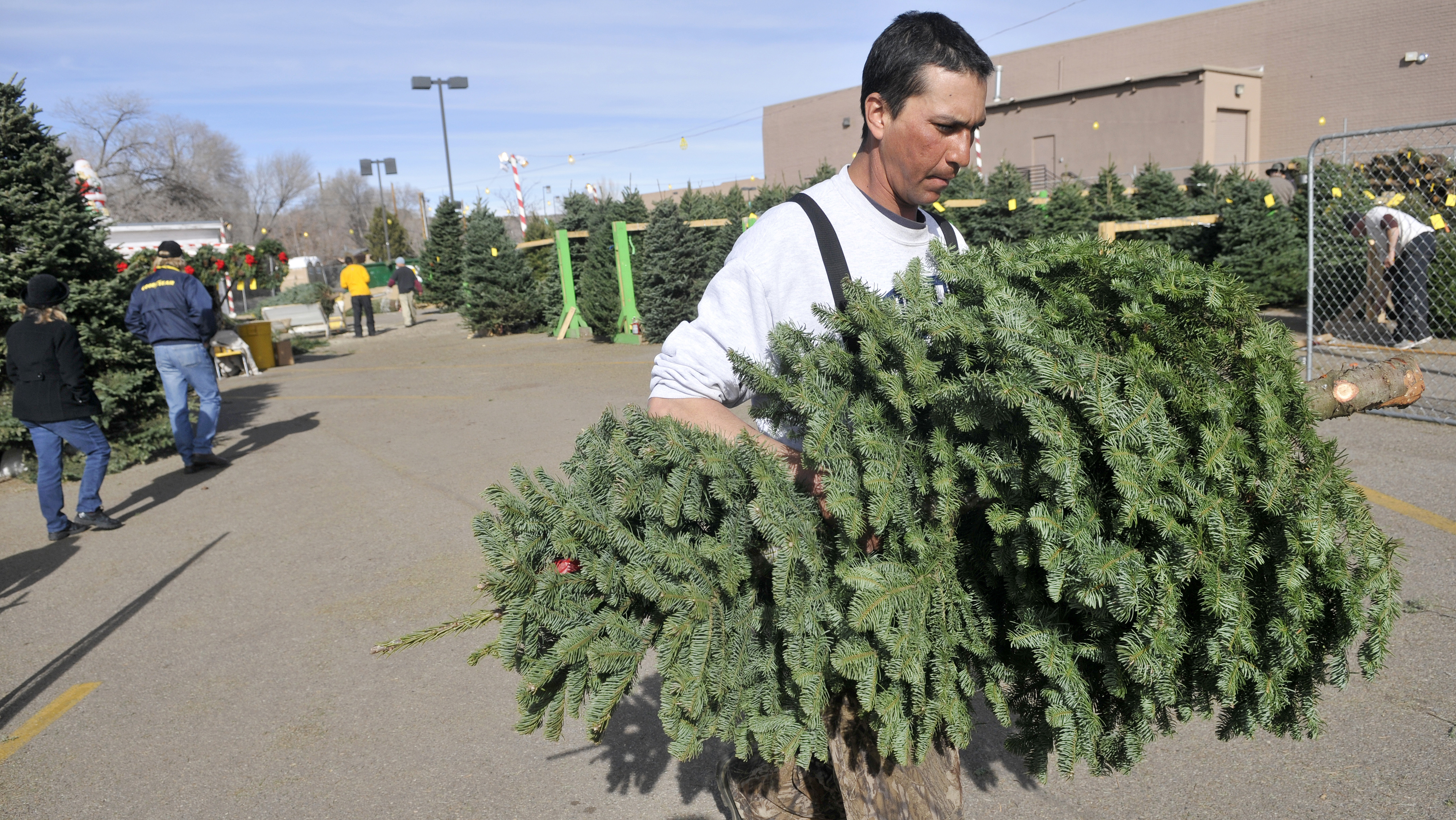 Delancey Street Christmas Trees.Christmas Tree Sales Help The Down And Out Help Themselves