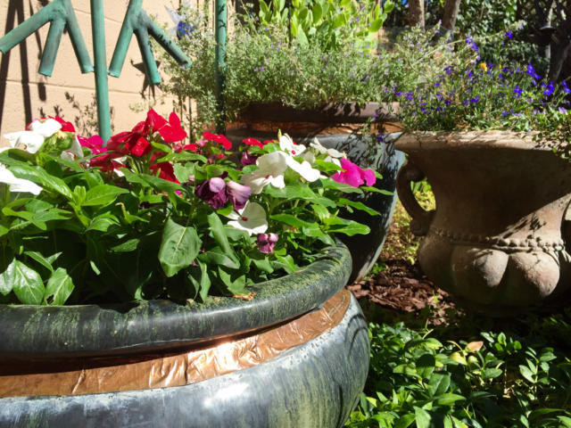 Little oases: A few tips and tricks make small-space gardening a