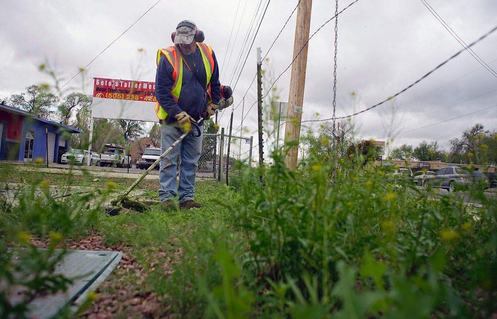 Bernalillo County Commission sacks weed control chemical