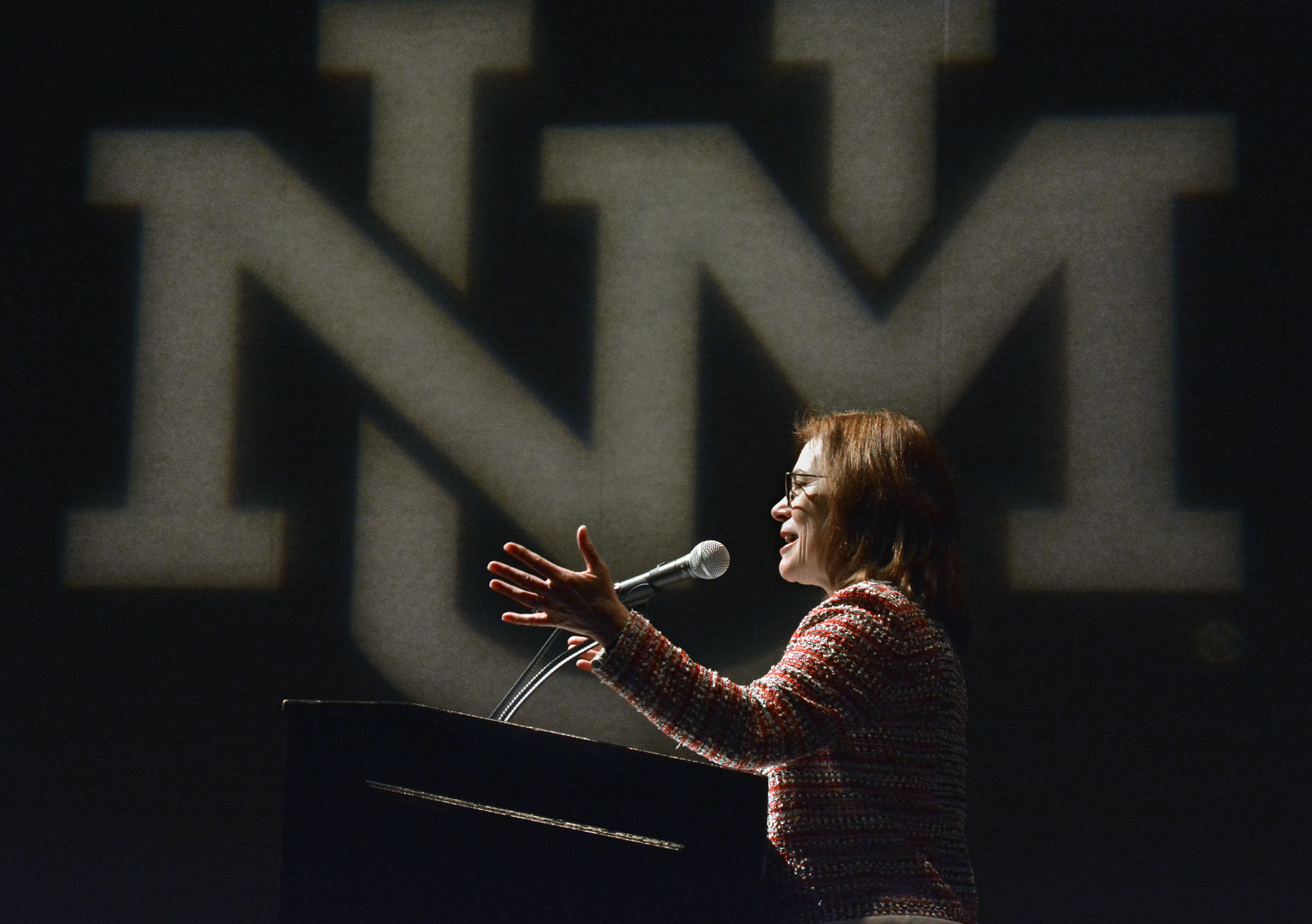 Stokes vows safety, diversity in State of University speech